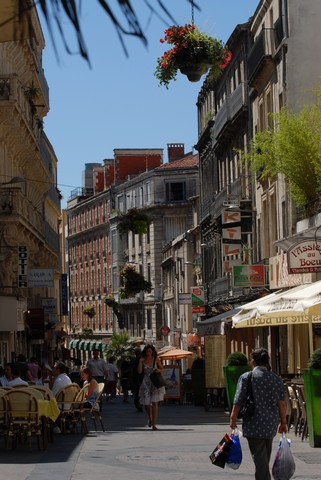 Several activities to do in Montpellier
