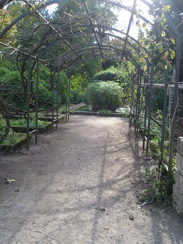 France has its oldest botanical garden in Montpellier