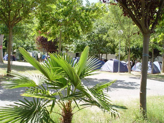 Camping Palavasienne Oasis, near Montpellier (34) can pitch a tent in the (...)