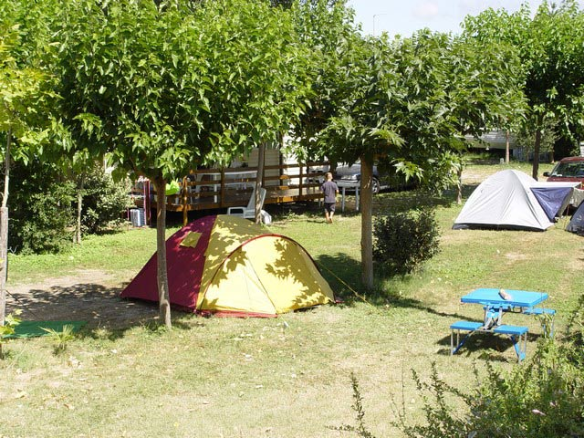 At the campsite in Palavas near Montpellier, there is a choice between the (...)