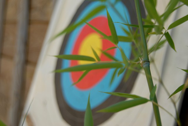 Opportunity to learn to archery to camping near the Mediterranean Sea in (...)